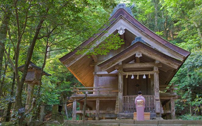 Shrine at Izumo Taisha in a bespoke tour of japan