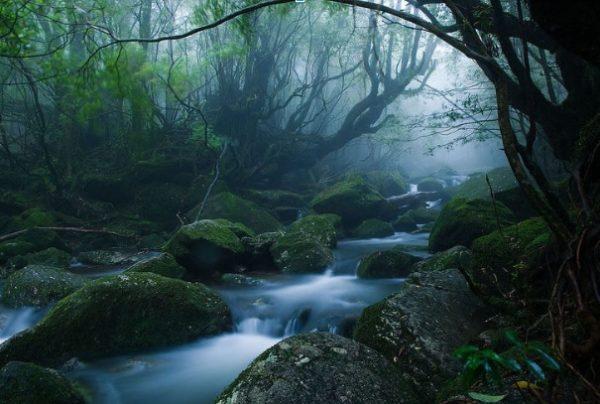 secret and hidden places japan
